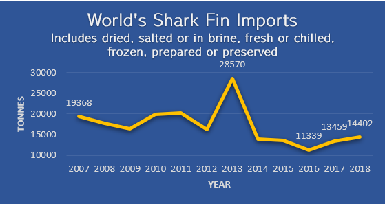 World's Shark Fin Imports