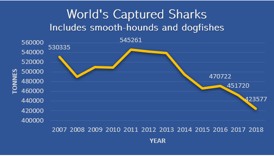 World's Captured Sharks Data